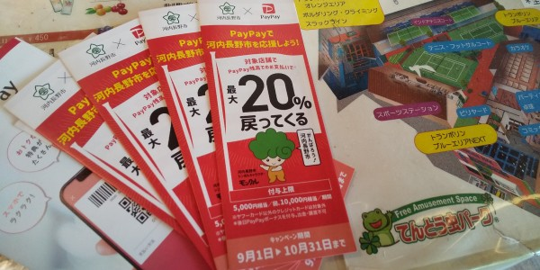 20%キャッシュバック!10月31日まで河内長野店